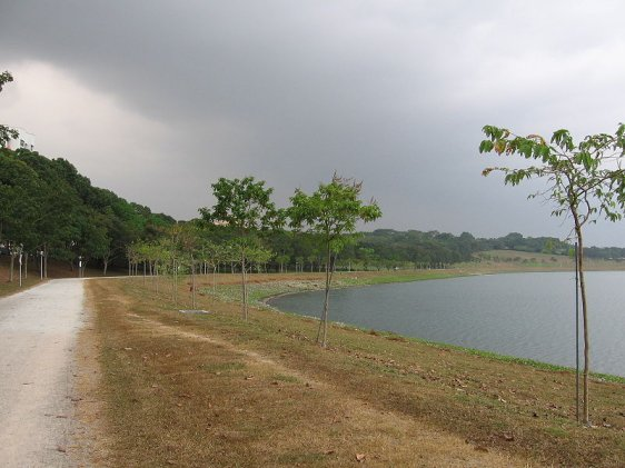 bedok-reservoir-park-singapore1