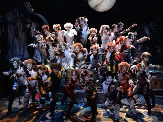 Cats Musical Uk Tour  Cast