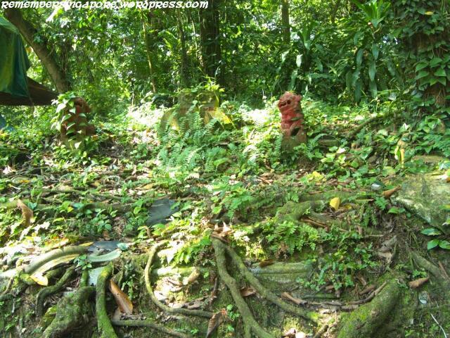 bukit-brown-cemetery05