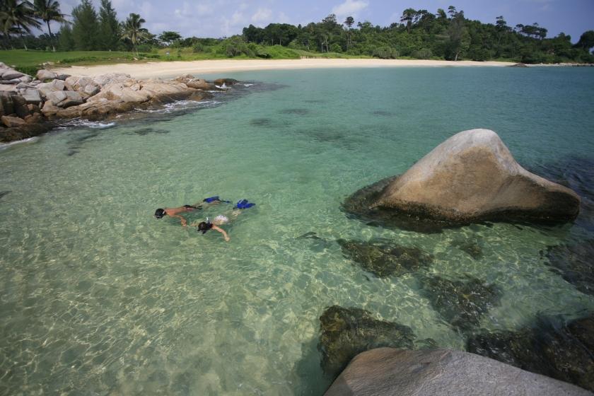 Activites - Snorkelling
